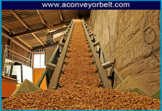 Wood conveying Belt System