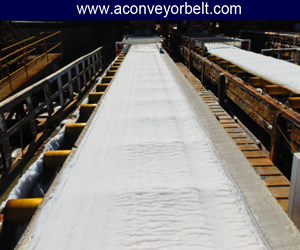 Ginning Conveyor Belts, Manufacturer of Conveyor Belt for Ginning Industry