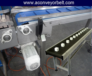 Conveyor Belt For Pharmaceutical Machinery Expoters, Packing Conveyor Belt For Pharmaceutical Ahmedabad